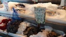 All Kinds of Shellfish.