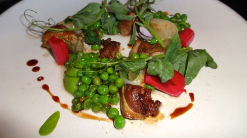 Duck Confitura with English Pea, Rhubarb, Baby Onion, and Saba (8.5/10).