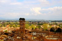 Gorgeous View of Lucca.