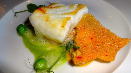 Close Up of the Turbot.