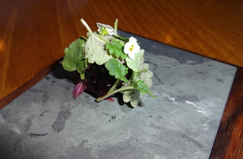 Blackberry with Lemon Balm (8/10).
