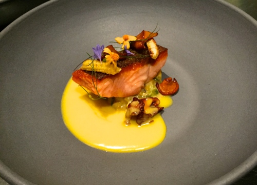 Pan Seared Trout with Corn and Shishito Pepper Relish, Chanterelle Mushrooms, Baby Corn, and Corn Sauce.