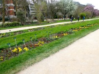 Jardin des Plantes.